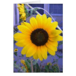 Bright Sunflower Greeting Card