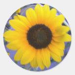 Bright Sunflower Classic Round Sticker