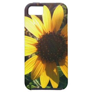 Bright Sunflower iPhone SE/5/5s Case