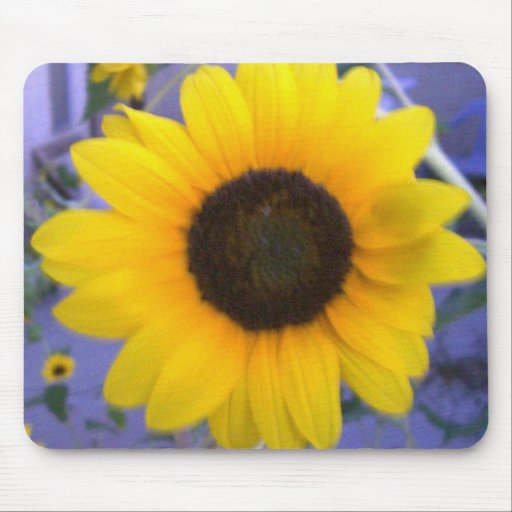 Bright Sunflower Mouse Pad