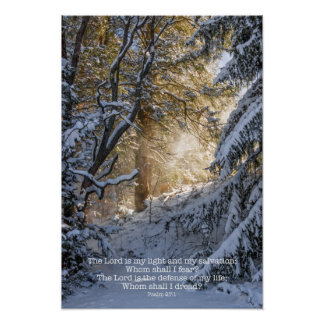 Bright Sunshine Through Snow Poster
