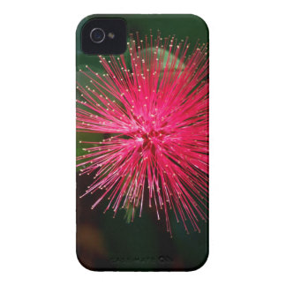 Bright Tears iPhone 4 Case
