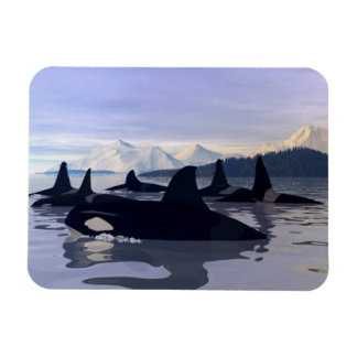 Bright Water Orca Rectangular Photo Magnet