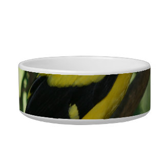 Bright yellow and black bird in tree pet food bowls