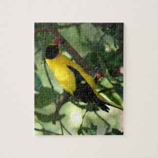 Bright yellow and black bird in tree jigsaw puzzle