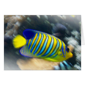 Bright yellow and blue fish card