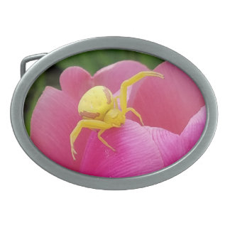 Bright Yellow Crab Spider on Tulip Belt Buckle