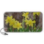 Bright Yellow Daffodils Notebook Speaker
