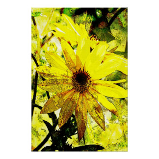Bright Yellow Daisies Poster