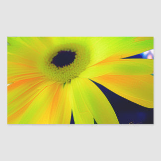 Bright Yellow Daisy Gifts Rectangular Sticker