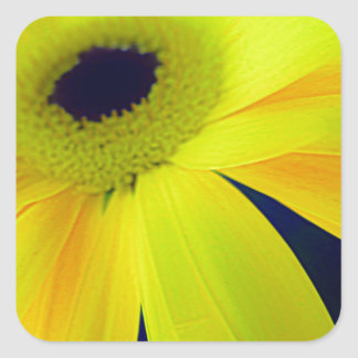 Bright Yellow Daisy Gifts Square Sticker