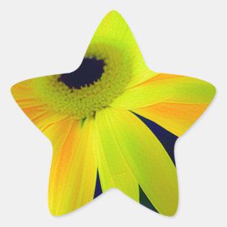 Bright Yellow Daisy Gifts Star Sticker