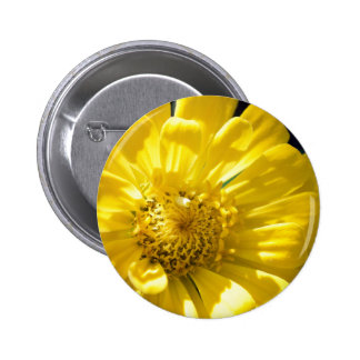 Bright Yellow Flower (Gift) Button