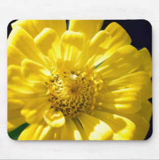 Bright Yellow Flower (Gift) Mouse Pad