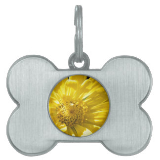 Bright Yellow Flower (Gift) Pet Name Tag