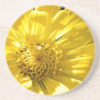 Bright Yellow Flower (Gift) Sandstone Coaster