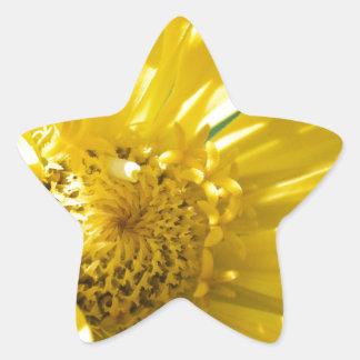 Bright Yellow Flower (Gift) Star Sticker