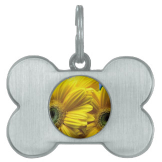 Bright Yellow Flowers (Gift) Pet Tag