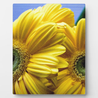 Bright Yellow Flowers (Gift) Plaque