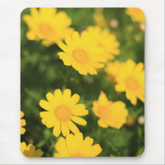 Bright Yellow Flowers Mouse Mat Mouse Pad