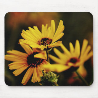 Bright Yellow Flowers Mouse Pads