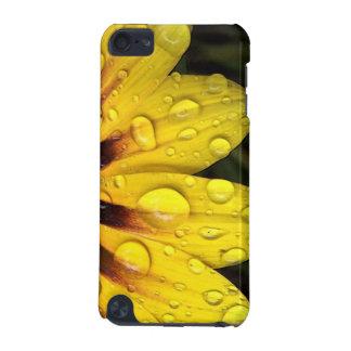 Bright Yellow Gazania Flower iPod Touch Case
