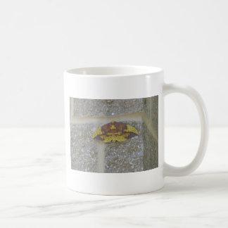 Bright Yellow Green & Brown Moth on Grey Brick Coffee Mug