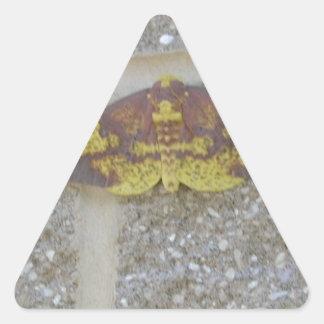 Bright Yellow Green & Brown Moth on Grey Brick Triangle Sticker