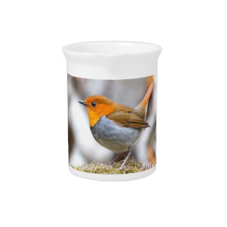 Bright Yellow headed Japanese Robin Drink Pitchers