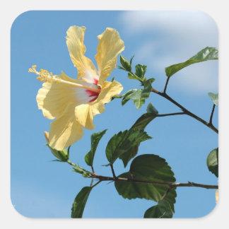 Bright yellow hibiscus flower Sticker