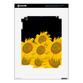 Bright Yellow Sunflowers Skins For iPad 3