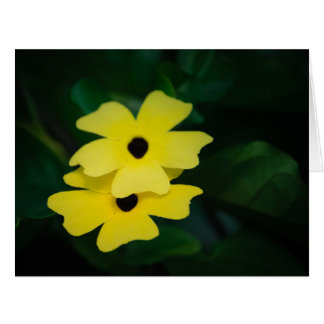 Bright Yellow tropical flowers at The Eden Project Card