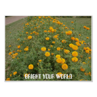 BRIGHT YOUR WORLD POSTER