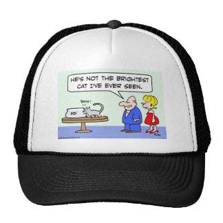 brightest cat bump goldfish bowl trucker hat