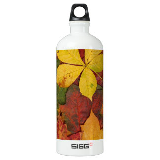 Brightly Colored Fall Leaves Aluminum Water Bottle