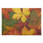 Brightly Colored Fall Leaves Cloth Placemat