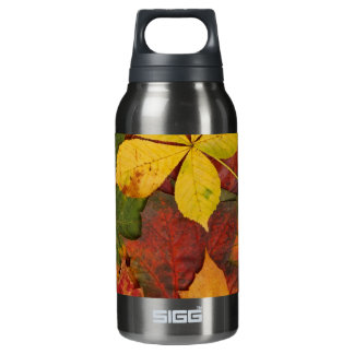 Brightly Colored Fall Leaves Insulated Water Bottle