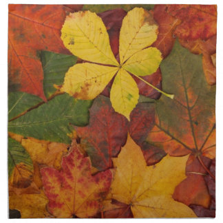 Brightly Colored Fall Leaves Printed Napkins
