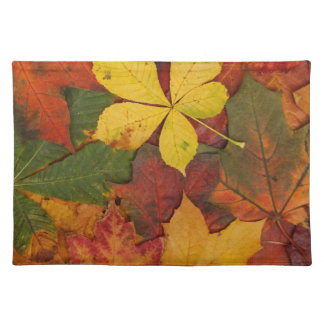 Brightly Colored Fall Leaves Placemat