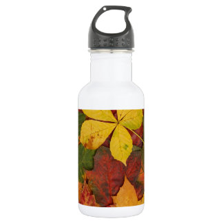 Brightly Colored Fall Leaves Stainless Steel Water Bottle