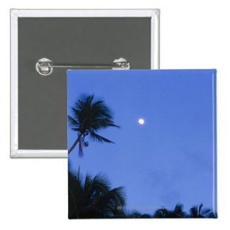 Brightly lit moon, silhouette of coconut trees button