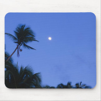 Brightly lit moon, silhouette of coconut trees mouse pad