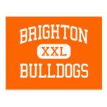 Brighton - dogos - alta - Brighton Michigan Tarjetas Postales