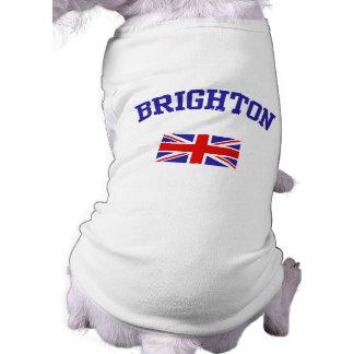 Brighton Playera Sin Mangas Para Perro