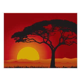 Briliiant Red Sunset Under The Bonsai Tree Poster