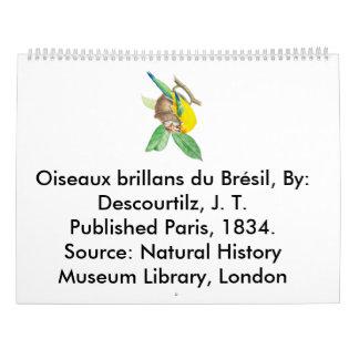 Brillans du Brésil de Oiseaux Calendarios De Pared