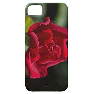 Brillant Red Rose iPhone SE/5/5s Case