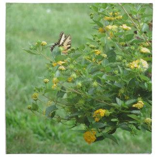 Brillante como mariposa
