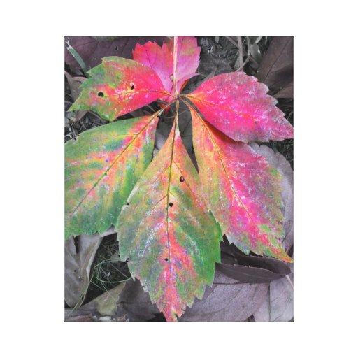 Brillantez entre el gris - hoja del otoño impresión en lona