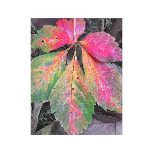 Brillantez entre el gris - hoja del otoño impresiones de lienzo